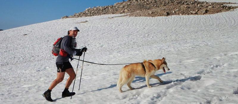 Mit Sarja beim Zugspitz-Dogtrekking